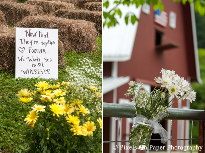 Wedding aisle details and daisies at outdoor country mountain wedding at big red barn in west jefferson nc photo