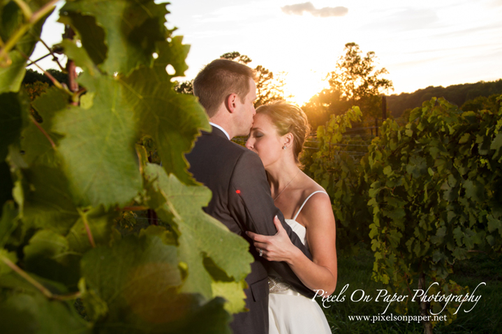 Moffitt Elkin Creek Vineyard Wedding Photo by Pixels On Paper. Boone, Blowing Rock, Asheville, Wilkes, Winston Salem Wedding Photographers