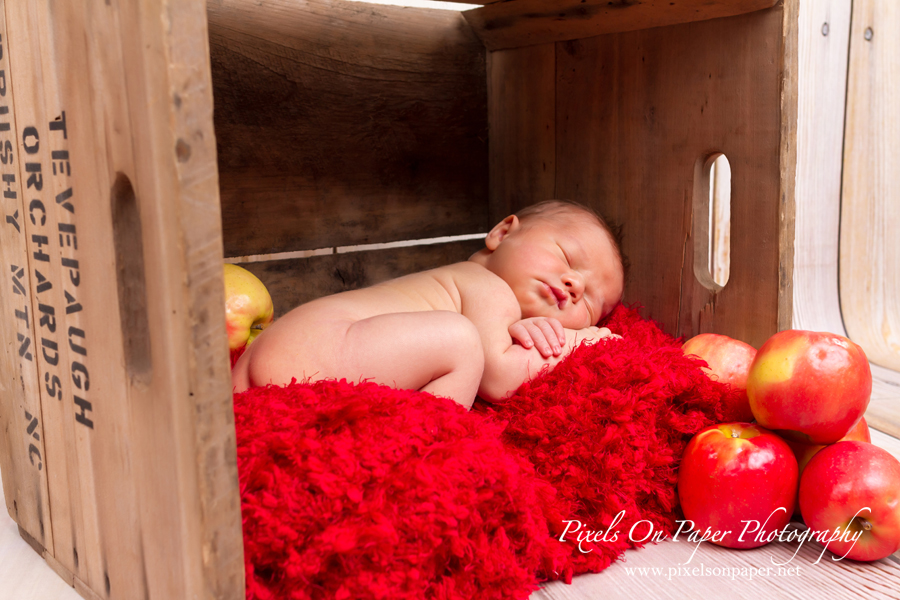 Conner Tevepaugh Newborn Photography by Pixels On Paper Portrait Photography photo