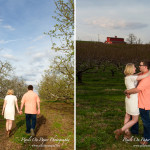 Parsons engagement portrait photography by Wilkesboro NC Photographers Pixels On Paper photo