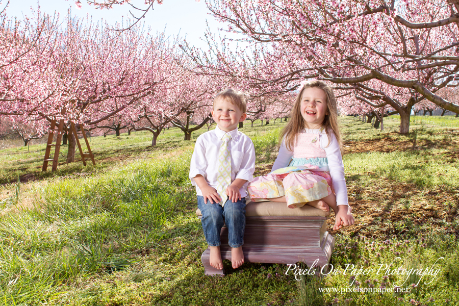 Pixels On Paper Family Spring outdoor portrait photography photo