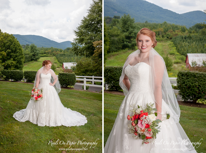 Pixels On Paper NC Mountain Wilkesboro Wedding Photographers Bethany Church Todd NC and Doughton Hall Bed and Breakfast Reception Photo