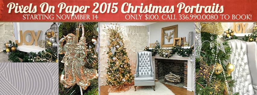 Pixels on Paper holiday christmas portrait promo 2015