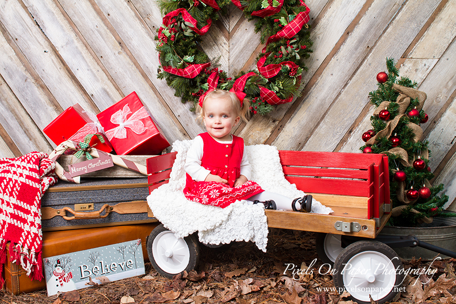 Pixels on Paper Holiday Portrait session photo