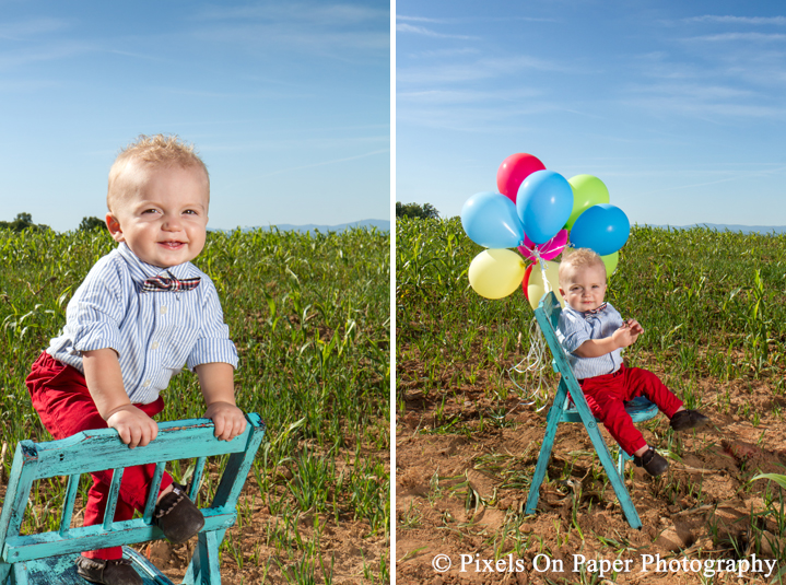Outdoor one year old child portrait photos and cake smash in Yadkin Valley NC by Wilkesboro NC family photographers Pixels On Paper Photography. ©2015 Pixels On Paper Photography http://www.pixelsonpaper.net Do not copy, print, crop or remove watermark.