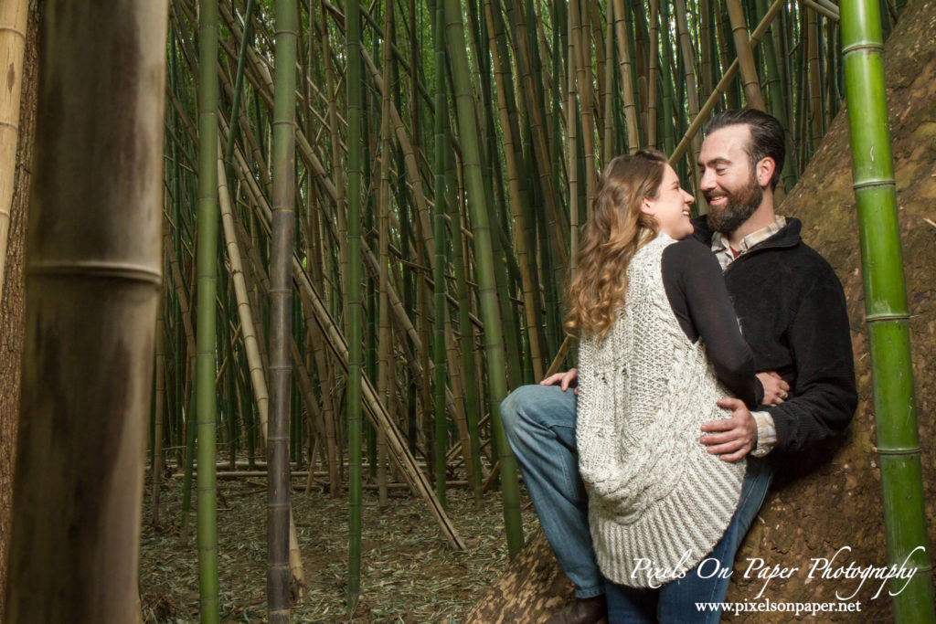 Pixels on Paper engagement photographers Biltmore Estate photos