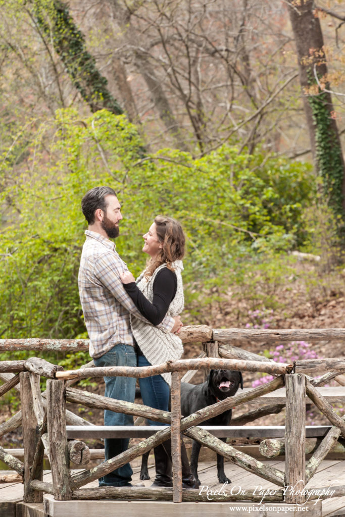 Pixels on Paper engagement photographers Biltmore Estate photo