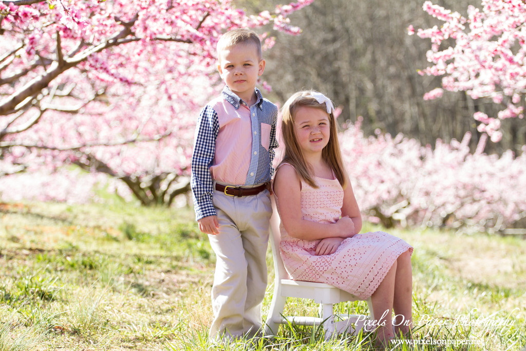 NC Mountain Outdoor Family Portrait Photos by Pixels On Paper Photographers photo