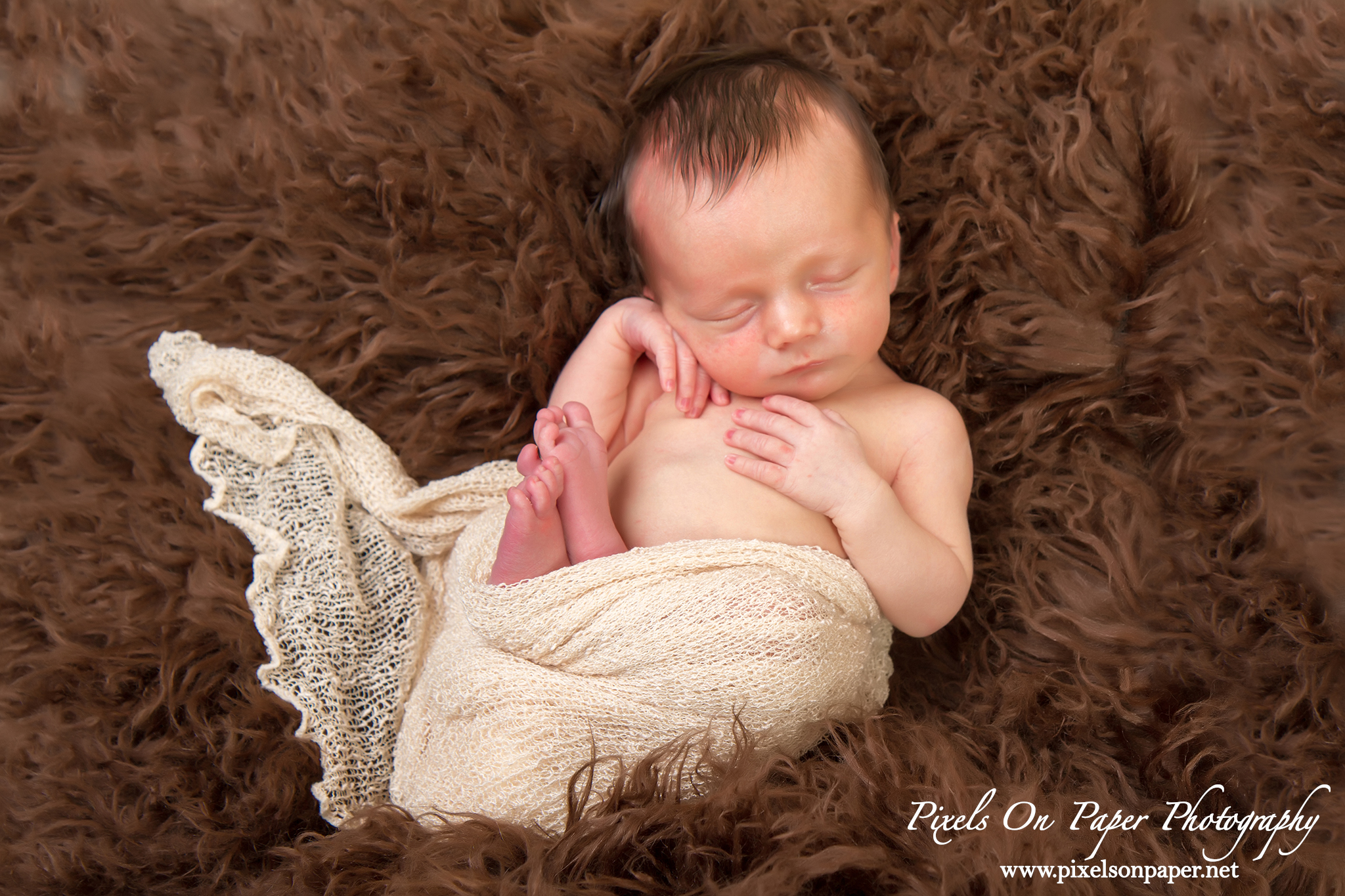 wilkesboro nc newborn baby portrait photographers photo