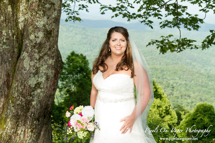 Madi Ball Pixels On Paper Photography Bride Outdoor Bridal portrait photography West Jefferson NC photo